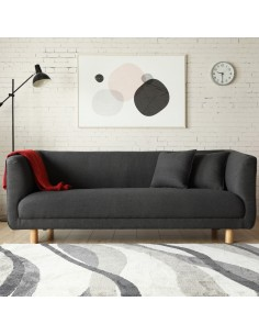 Bergen gris : Canapé scandinave 3 places gris anthracite  2 coussins