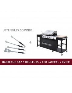 DALLAS: Cuisine d'extérieur luxe, 5 brûleurs  brûleur latéral  évier